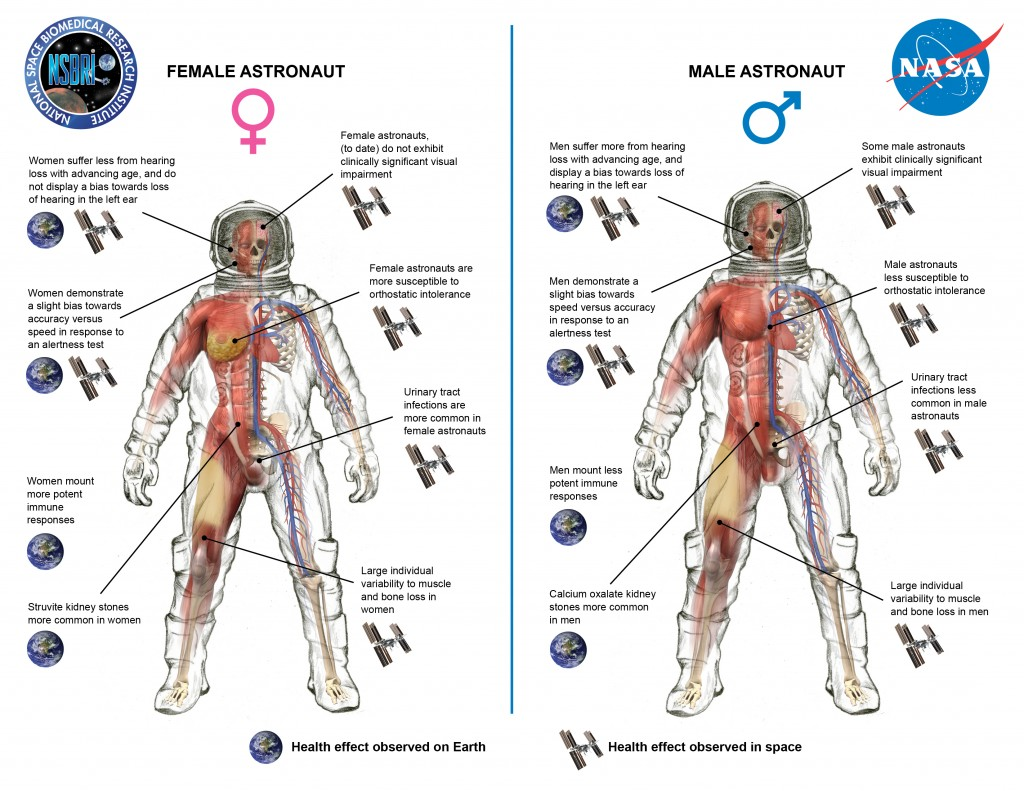 spaceradiationgenderillustration59459.jpg