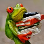 frog-1339897_960_720