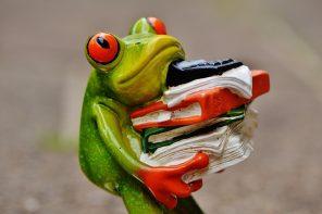 frog-1339897_960_720