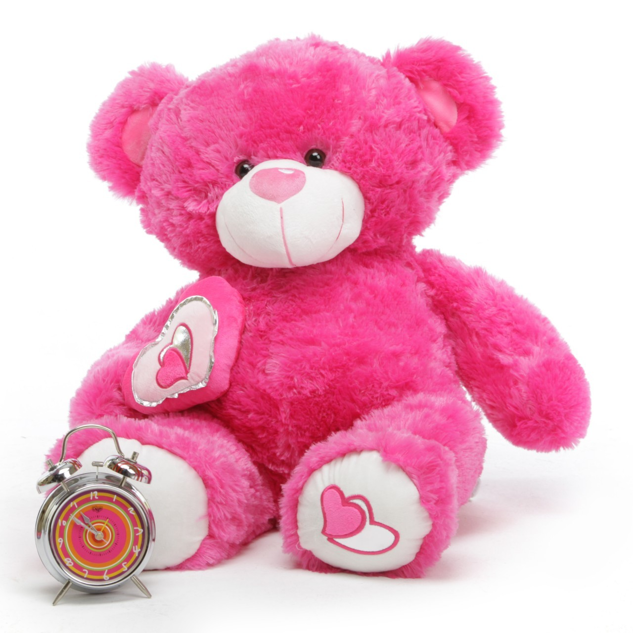goa u0027s electoral officers want to give women voters teddy bears