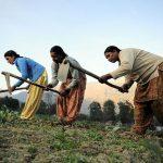 NP_Himachal_Pradesh_68_(6348260166)