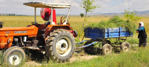 tractorindira